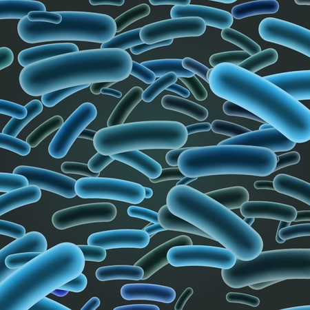 WHO: South Africa's listeriosis outbreak 'largest ever'