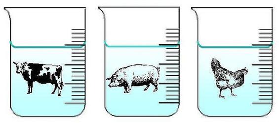 Etiketten vlees- en visproducten niet altijd eerlijk over hoeveelheid water